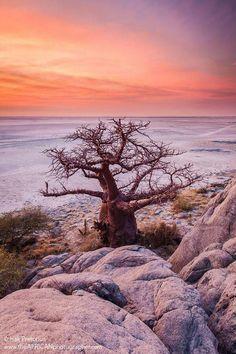 Makgadikgadi pans, Botswana. One of my favorite places is the Makgadikgadi pans in Botswana. #Botswana. Isak@theafricanphotographer photos and photography
