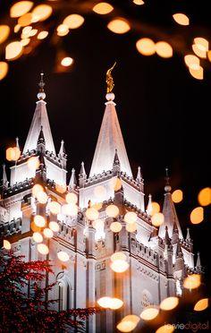39 templos LDS bonita - Scott Jarvie (18)