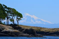 Madrona Tree & Mount Baker, via Flickr.