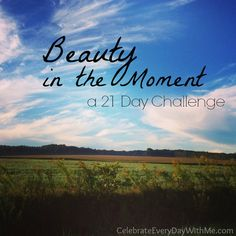 Beauty in the Moment - a 21 Day {photo} Challenge to slow down and enjoy the beauty around you.