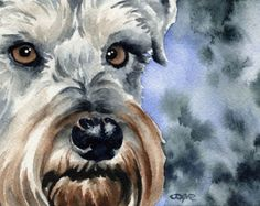 This is a professional, archival quality open edition Miniature Schnauzer art print. from an original watercolor painting by artist David J. Goldendoodle Art, Schnauzer Puppy, Schnauzers, Dog Paintings, Watercolor Paintings, Painting Fur, Watercolor Paper, Watercolors, Miniature Schnauzer Black