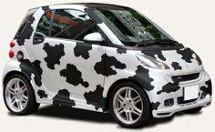 #smart #smartcar #smartcars #fortwo #cow #cows