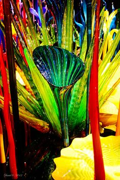 Chihuly by Dr D's Photos, via Flickr: Photographer Daniel DesJardins
