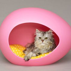 Pet Bed Pink now featured on Fab.