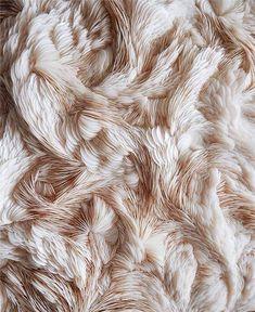 Experimental Textiles Design with intricate feather textures; textile art // Rowan Mersh Experimental Textiles Design with intricate feather textures; Feather Texture, Textile Texture, 3d Texture, Fabric Textures, Textures Patterns, Visual Texture, Feather Art, Light Texture, Soft Fabrics