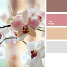 An appropriate color scheme for decoration of premises for a wedding day. Delicate pastel shades accentuated by brown and orange look fresh. This color scheme can be applied in the bridal outfit, bouquet and manicure. The palette will be appropriate in summer dresses of romantic women.