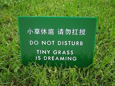 Say Sorry To The Grass funny lol humor funny pictures funny photos funny images hilarious pictures Google Translate, Humor Chino, Flower Yellow, Translation Fail, English Translation, Funny Chinese, Chinese Humor, Rock Lee, Jeff The Killer