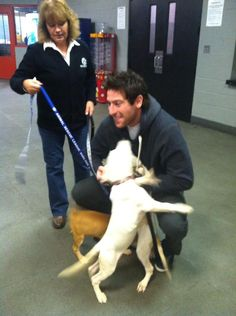 Jamey with adorable pups.