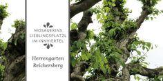 Mosauerins Lieblingsplatzl im Innviertel: Herrengarten Reichersberg Letter Board, Lettering, Nature, Tips, Lawn And Garden, Drawing Letters, Brush Lettering