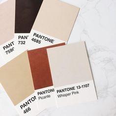 Pantone neutral color palette