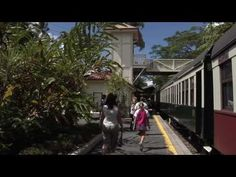 Cairns, Australia - YouTube