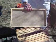 This guy does an awesome job of describing how to start a beehive, and shows the whole process. We enjoyed this video! He also invites questions. Very cool.