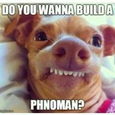 Do you want to build a phnoman?