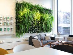 Indoor plantwall at Superfruit, Stockholm, Sweden / Installation 2015 ph. Fredrik Llndén