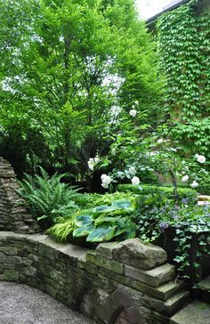 Lovely old stone - great greenery