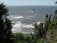 31780 Chantrelle Ln, Gold Beach, OR 97444 is For Sale | Zillow