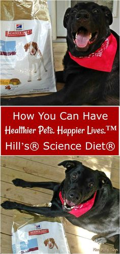 I love my dogs and want them to have long happy lives! Find out how you can have Healthier Pets. Happier Lives.™️ - PLUS, enter the PAWSOME Hill's Pet Nutrition Sweepstakes for a chance to win $100.00 to go towards your next vet checkup! AND, you can grab