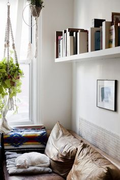 this is a pin about putting shelving behind a couch and hanging potted plants from windows.