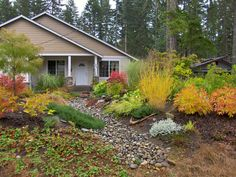 Inspiring Front Yard Landscaping For Fall Season - Front yard landscaping isn't frequently viewed as a territory for engaging or for sitting and getting a charge out of the sun. The front yard is usual. Dry Garden, Autumn Garden, Garden Shrubs, Home Landscaping, Front Yard Landscaping, Clematis, Landscape Design, Garden Design, Fall Landscape