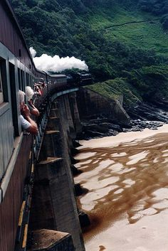 Outeniqua Choo Choo train from George to Knysna on our honeymoon South Africa © Jenniflowers Travel Honeymoon Backpack Backpacking Vacation Knysna, Trains, Le Cap, Road Trip, Garden Route, By Train, To Infinity And Beyond, Africa Travel, Train Travel