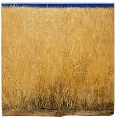 Ch. Bokoros Four Seasons, Greece, Contemporary Art, Painters, Artists, Summer, Hair, Beauty, Fields