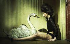 Designlenta — Красивые фотографии от Emma Tempest