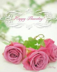 Greeting Good Morning Thursday, Good Morning World, Good Morning Good Night, Good Morning Quotes, It's Thursday, Happy Thursday Quotes, Sunday Quotes, Tuesday Greetings, Have A Happy Day