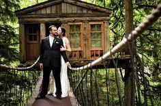 15 Romantic Tree House