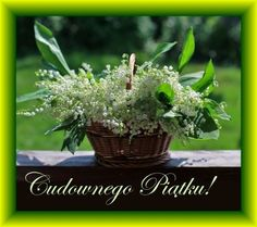 Happy Mothers Day, Good To Know, Herbs, Plants, Pictures, Good Morning, Funny Stuff, Photos, Mother's Day