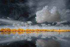 Breathtaking Multicolored Infrared Landscape (from Infrared series)   By: David Kecochkerian, via My Modern Metropolis