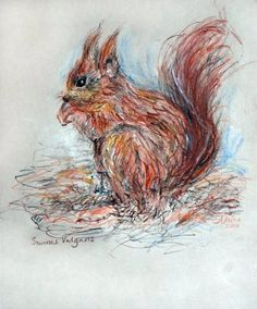 """""""Red squirrel"""" by Annabel Milne"""