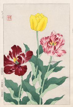 Tulip from Shodo Kawarazaki Spring Flower Japanese Woodblock Prints