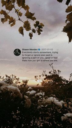 Another Shawn Mendes facts*on hiatus* Druhá časť knihy… – Unique Wallpaper Quotes Quotes Wolf, Xxxtentacion Quotes, Tumblr Quotes, Tweet Quotes, Mood Quotes, Lyric Quotes, Cute Quotes, Romance Quotes, Funny Quotes