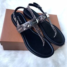 """New In Box Coach Sandals Size 8 NWT (brand new in box). Absolutely gorgeous Coach sandals! Flawless! Snakeskin print in a charcoal grey brown color (""""flint""""). Silver hardware. Size 8.   ❎No trades  ✅Offers considered through the offer button Coach Shoes Sandals"""