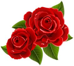 Red Roses Beautiful PNG Clipart Picture