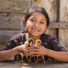 World Vision Catalog of Gifts Our Kids Could Save Up to Give for Christmas ... 2 Chickens for $25