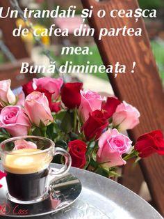 Good Morning, Table Decorations, Bom Dia, Buen Dia, Bonjour, Buongiorno, Dinner Table Decorations, Center Pieces