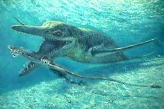 Prehistoric animals: Kronosaurus.