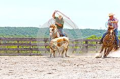 Roping Competition - Download From Over 27 Million High Quality Stock Photos, Images, Vectors. Sign up for FREE today. Image: 41078255