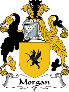 Heraldry exists in the form of crests which represent each family name. It was established to track genealogy and to determine rank among families. This crest for Morgan uses the colours black and yellow which symbolise resistance and majestic qualities