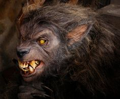 """#MonsterSuitMonday Here's a different take on a werewolf by KNB EFX Group. This was used in an episode of TV series """"Fear Itself"""". The episode from the first season was """"Something with Bite"""". (edit: I've been told that it was Also used in """"The Boy..."""