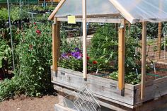 Square Foot Garden Designs: protected garden design   Gardening ...