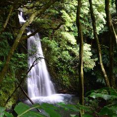 Rincones maravillosos de la isla de San Miguel Azores.