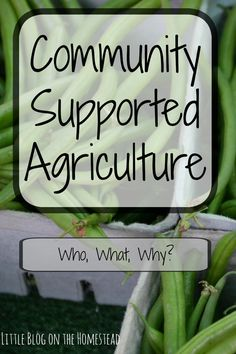 Community Supported Agriculture, the who, what, and why!