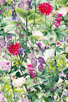SEP   Garden   Colourway 1 © Shelley Steer
