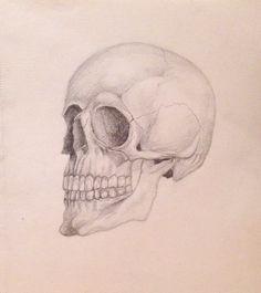 #skull #art #drawing