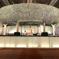 A gorgeous stage design by with a magical sky full of flowers held on the strength of the branches of 4 trees. Reception Stage Decor, Wedding Reception Backdrop, Wedding Entrance, Wedding Mandap, Modern Entrance, Wedding Dresses, Wedding Hall Decorations, Marriage Decoration, Backdrop Decorations