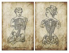 Digital Image Download Sheet - 2 Ladies Skeletons, OLD paper, drawing , set of 2 - Transfer To Pillows ,Burlap ,Tote Bag,  Print , wallpaper. $4.00, via Etsy.