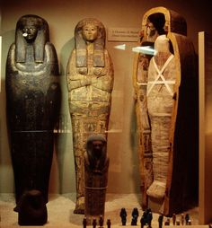 Chicago's Top 10 : Field Museum - Inside Ancient Egypt    This part-original, part-replica Egyptian ruin leads you up and down stairs, into Egyptian bedrooms and tombs, and even through a marketplace. Discover how Cleopatra lived and how mummies were wrapped.