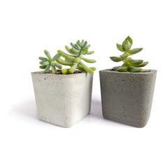 Concrete Planter for Succulent Home Decor Cacti Pot Modern Square... (14 BAM) ❤ liked on Polyvore featuring home, home decor, plants, square planters, cement planters, succulent planter, concrete planters and concrete pot